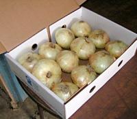 onion_box.jpg