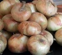 vidalia-onions.jpg